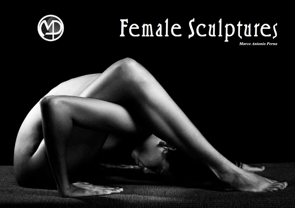 Female Sculptures - Esculturas Femininas